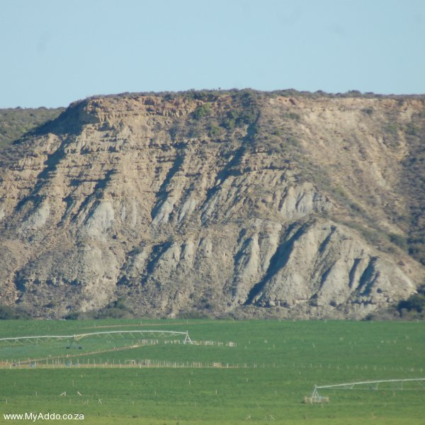 Kudu Ridge View