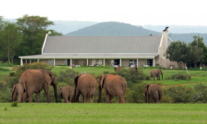 River Bend Lodge, Addo Elephant National Park