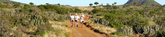Addo Elephant Park trail Run in the Eastern Cape