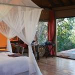 The Bush Lodge - Amakhala Game Reserve